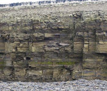 Quarry bed